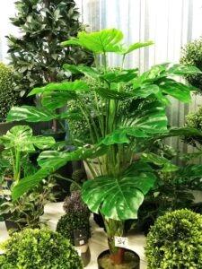 Arbres et Arbustes Artificiels de toutes tailles à petits prix chez Flora Déco