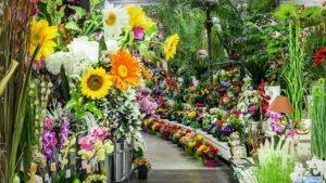 Fleurs et Plantes artificielles sous toutes leurs formes chez Flora deco pour les petits budgets